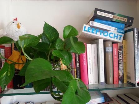 Wat jongeren liever lezen: boeken of berichten?